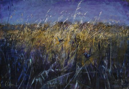 Splendour in the Grass 2 - pastel on board - 55 x 80 cm - SOLD